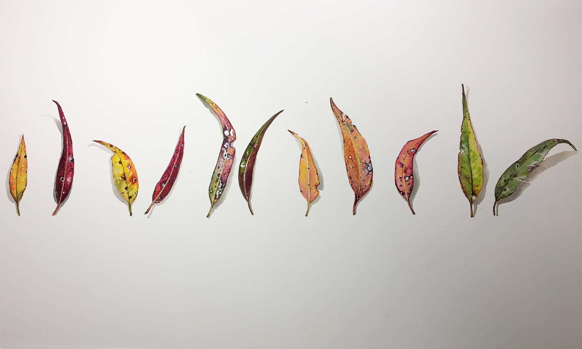 Tina Wilson | Artist